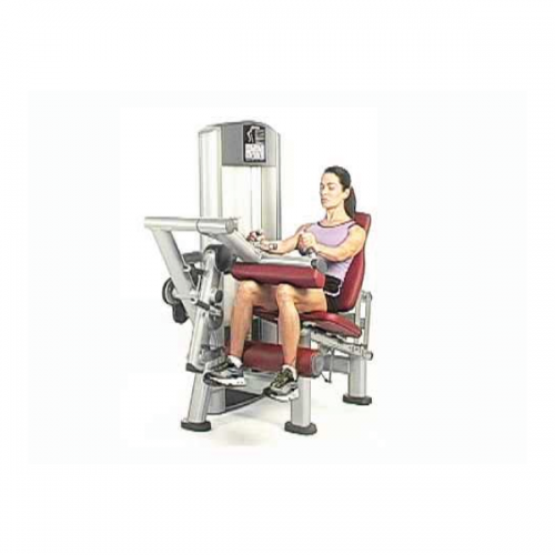 Offer Life Fitness  n. 13 machines - Wellness Outlet