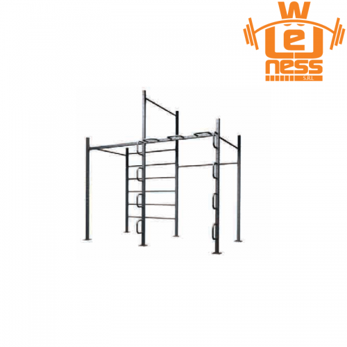 Calisthenics 2  TOORX - Wellness Outlet