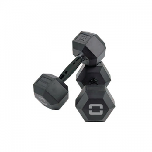 Hex dumbbells with zinc-coated handle AMEG TOORX - Wellness Outlet